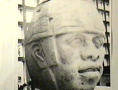 http://www.raceandhistory.com/images/postedD147.jpg